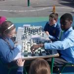 Chess 008