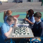 Chess 010