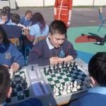 Chess 012